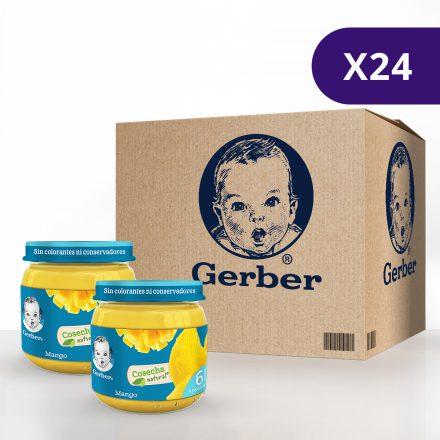GERBER® Mango - Caja de 24 unidades